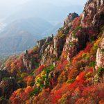 00紅葉mountain-1243486_960_720