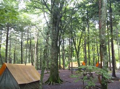 県民の森キャンプサイト