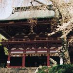shiogama_pic01